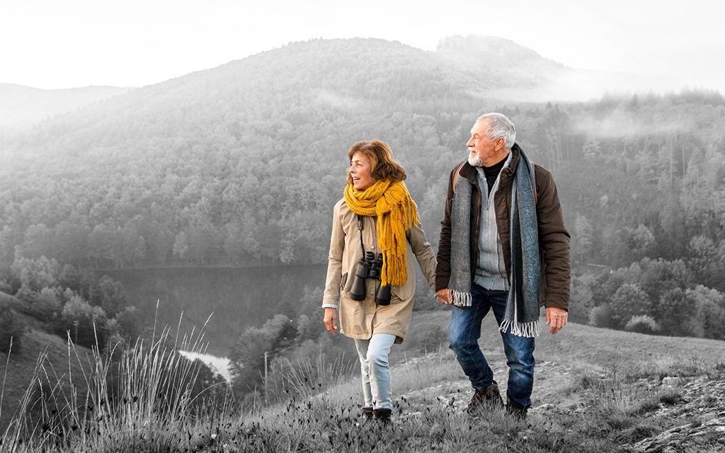 Greyed out background image with retirees in colour walking on foresty landscape holding hands
